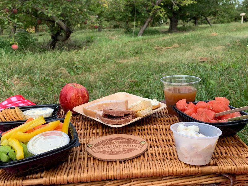 picnics2