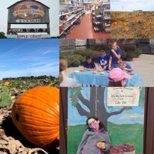 Pie eating contest, pumpkins,store,grow chart