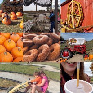 apple slushie, car races, giant pumpkins,
